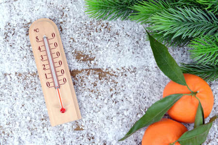 Thermometer in snow close-up photo