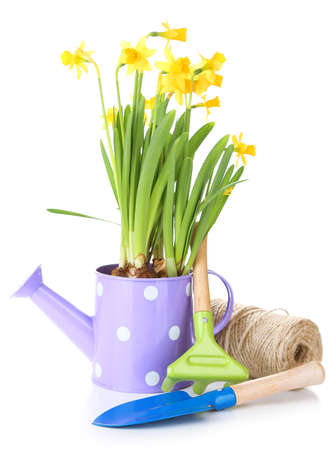 Composition with garden equipment and flowers in watering can isolated on white photo