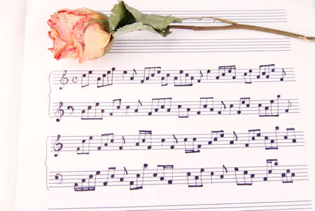 Dried rose flower on music book, close-up photo