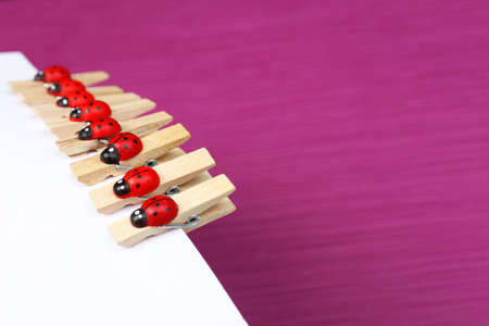 Abstract background with colorful wooden pins and paper photo