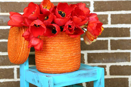Bouquet of colorful tulips in wicker basket, on chair, on home interior background photo
