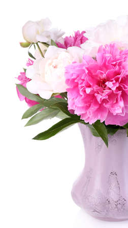 Beautiful pink and white peonies in vase, isolated on white photo