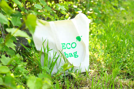 Eco bag on green grass, outdoors Reklamní fotografie