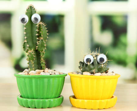 Cactuses in flowerpots with funny eyes on wooden windowsill photo
