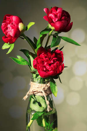 Beautiful pink peonies in vase on light background photo