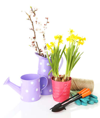Composition with garden equipment and flowers in metal bucket isolated on white photo