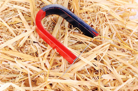Magnet and needle on hay background photo