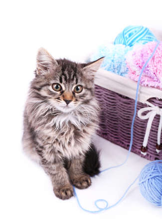 Funny gray kitten and balls of thread in wicker basket, isolated on white photo