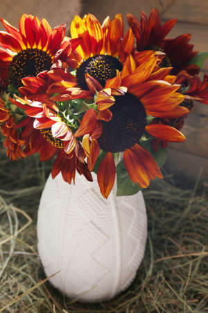 indoors: Beautiful flowers, indoors Stock Photo