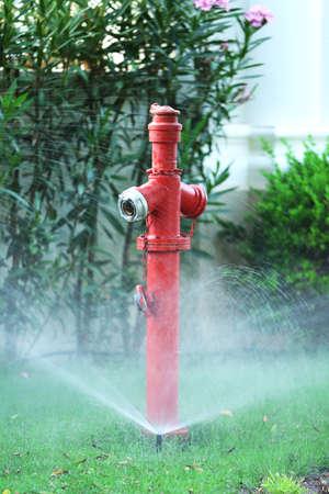 Irrigation system in garden photo