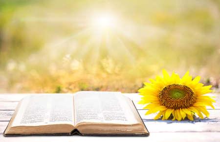 Open boek op tafel buiten Stockfoto