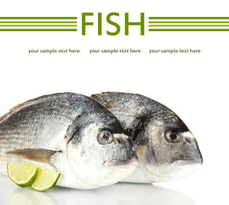 Dorado fish with lemon isolated on white photo