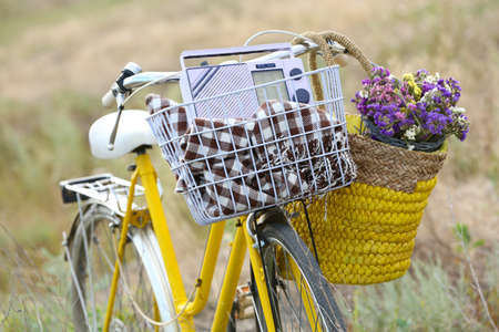 Bicycle with basket of flowers in meadow during sunset photo