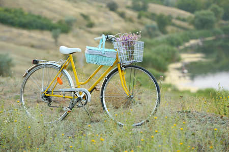 Bicycle in meadow during sunset photo