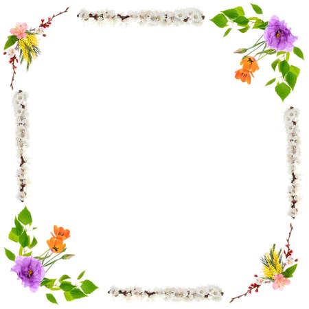 Flower Frame Stock Photos. Royalty Free Flower Frame Images