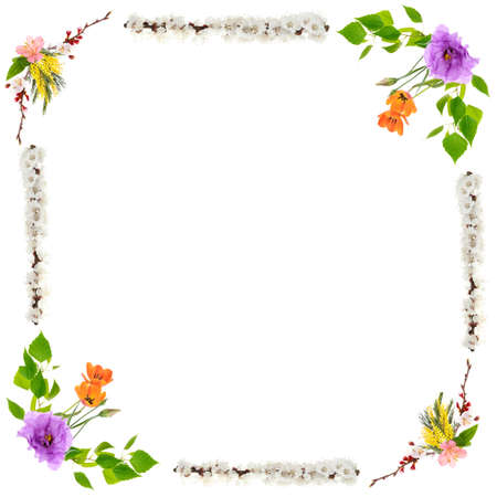 Beautiful flower frame isolated on white Archivio Fotografico