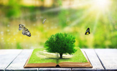 Fantasy tale book on nature background Stock Photo