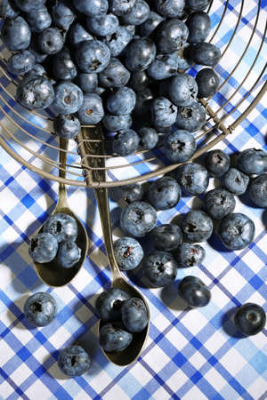Tasty ripe blueberries in metal basket, on tablecloth background photo