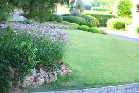 arbre paysage: Belle am�nagement paysager dans le jardin