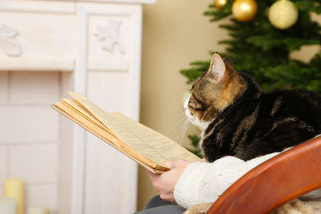 Woman and cute cat sitting on rocking chair and read the book in the front of the fireplace photo