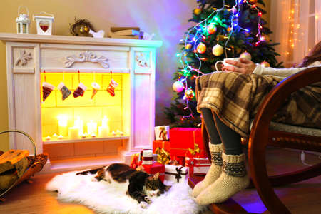 Cute cat lying on carpet in the front of the fireplace photo