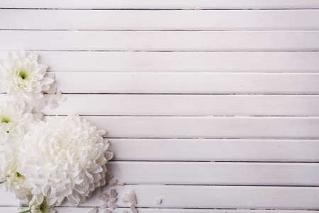 Beautiful flowers on wooden background photo