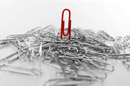 Individuality concept. Paper clips close up