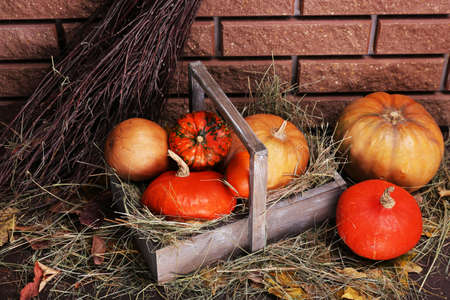 Pumpkins in wooden box on floor on brick wall background photo