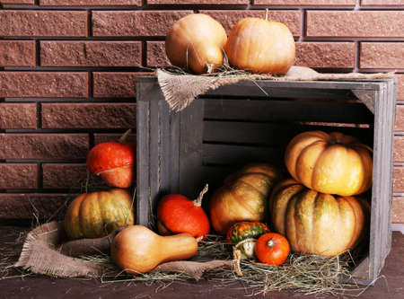 Pumpkins in crate on floor on brick wall background photo