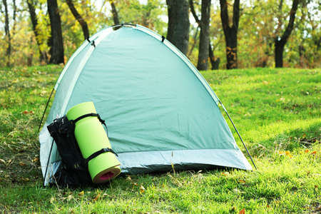 karemat: Touristic tent on green grass in a forest Stock Photo