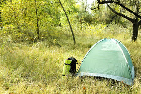 karemat: Touristic tent on dried grass in a forest