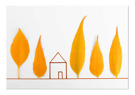 Autumn leaves with painted house on white