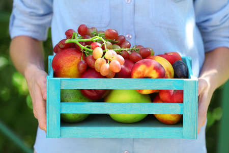 Fresh organic fruits in wooden box in hand outdoors