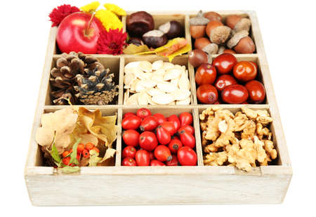 Autumn composition in decorative wooden box, isolated on white photo