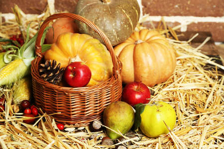 bricks background: Beautiful autumn composition on straw,  on bricks wall background