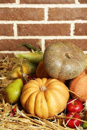 Beautiful autumn composition on straw,  on bricks wall background photo