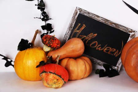 witchery: Halloween composition on floor on wall background