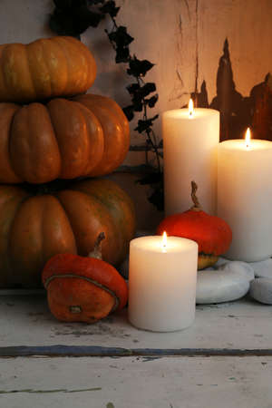 witchery: Halloween composition on board on old wooden wall background Stock Photo