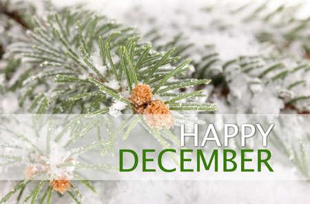 december: Happy December, greeting card.
