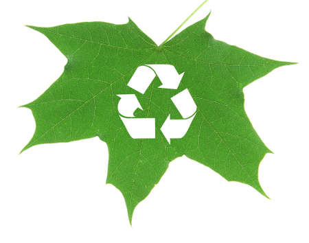 utilization: Recycle symbol on green leaf, recycling concept Stock Photo
