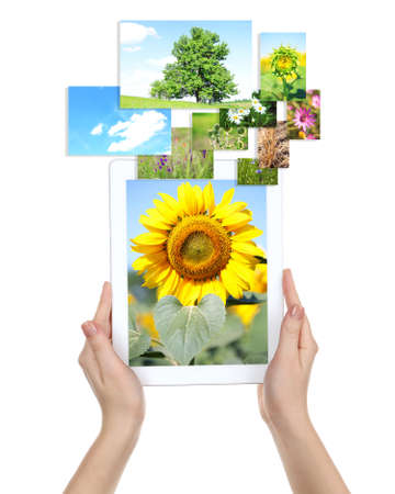 Tablet PC in hands and images of nature objects isolated on white photo
