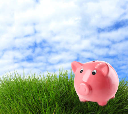 Piggy bank on field background photo