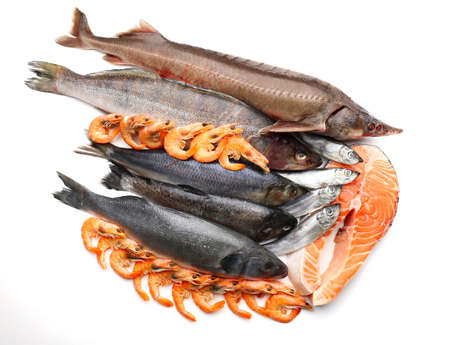 Fresh catch of fish and other seafood isolated on white photo
