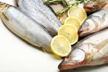 Fresh fish with lemon and rosemary close-up photo