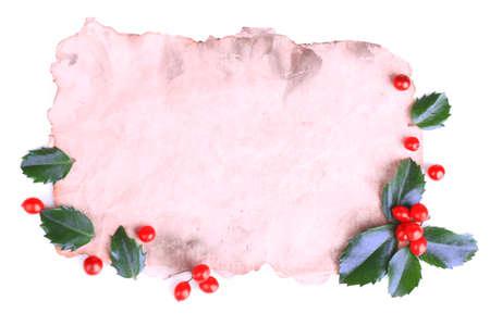 ilex aquifolium holly: Empty paper with European Holly (Ilex aquifolium) with berries, isolated on white Stock Photo