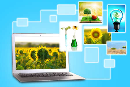Laptop and eco theme images on blue background photo