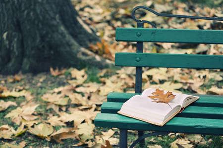 romance: Abra o livro com folha deitada no banco no parque do outono Imagens