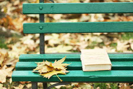 closed book: Closed book lying near autumn leaves on bench in park