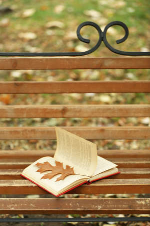 timber bench seat: Open book with leaf lying on brown bench in autumn park