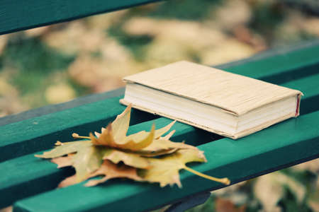 timber bench seat: Closed book lying near autumn leaves on bench in park